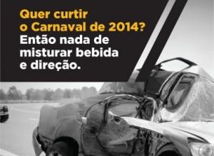 carnaval20132