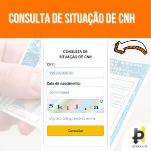 Consulta de Situação de CNH (1)